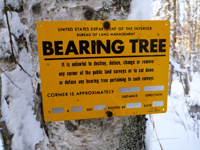 Blm Bearing Tree Tag Survbase Survbase Llc